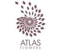 Atlas Flowers